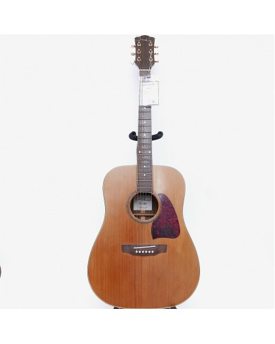 Custom Acoustic FG - 126