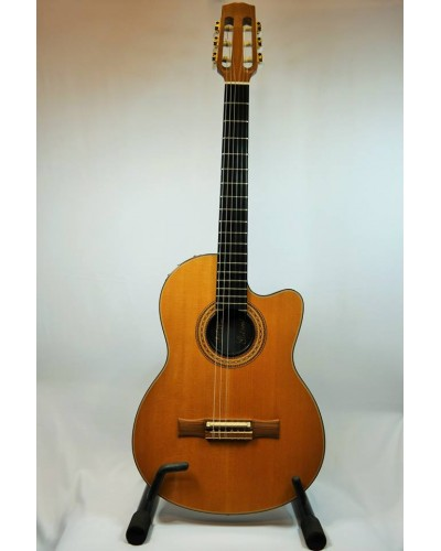 Gibson Chet Atkins CE Solidbody Classical SOLD!